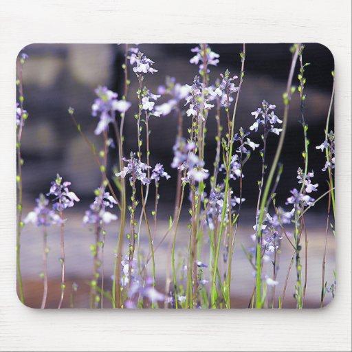 Wildflowers Mousepads