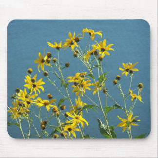 Wildflowers On Lakeshore#2 Mouse Pads