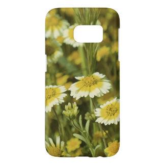 Wildflowers Yellow and White Sunflowers
