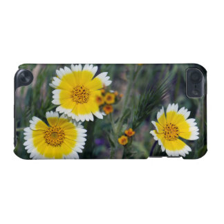 Wildflowers Yellow and White Sunflowers iPod Touch 5G Cases