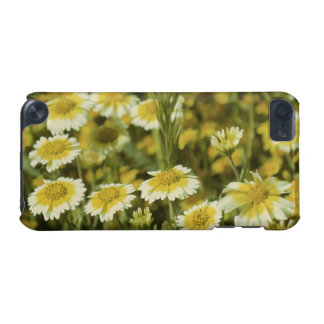Wildflowers Yellow and White Sunflowers iPod Touch 5G Cover