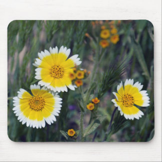Wildflowers Yellow and White Sunflowers Mouse Pad