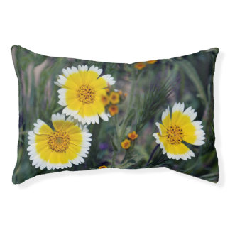 Wildflowers Yellow and White Sunflowers Pet Bed