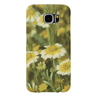 Wildflowers Yellow and White Sunflowers Samsung Galaxy S6 Cases