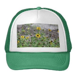 Wildflowers Yellow Daisy flowers Trucker Hat