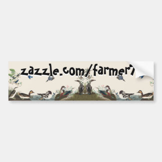 Wildlife Artwork Audubon Collage Bumpersticker Bumper Sticker