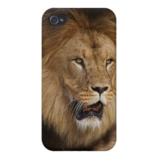 Wildlife case with Lion iPhone 4/4S Covers