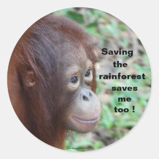 Wildlife Conservation:Orangutans and Rainforest Classic Round Sticker