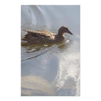 Wildlife Goose swimming in Lake, Nature, Bird Custom Stationery