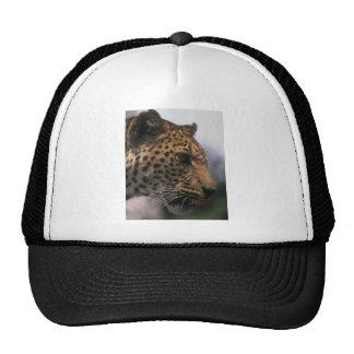 WILDLIFE MESH HATS