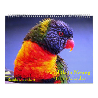 Wildlife in Nerang 2017 Calendar