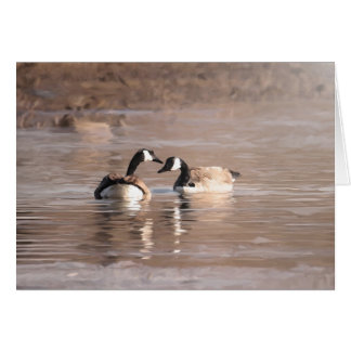 """Wildlife & Outdoors """"Love"""" Cards"""