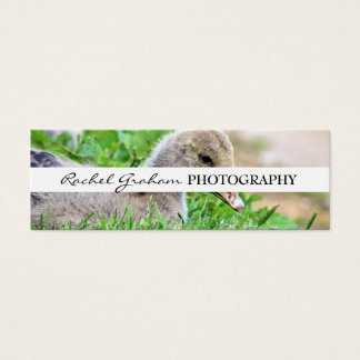 Wildlife - Photography Mini Business Card