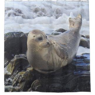 Wildlife shower curtain, harbor seal, marine life shower curtain
