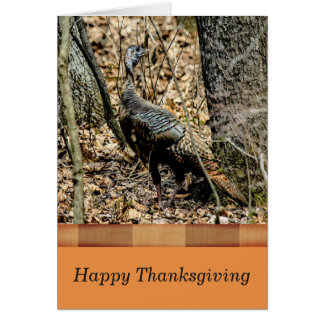 Wildlife Thanksgiving Card,  Turkey in the Forest Card