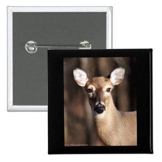 Wildlife Whitetail Deer Doe Portrait 15 Cm Square Badge
