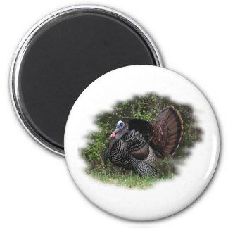 WildTurkey on the prowl 6 Cm Round Magnet