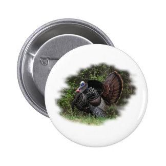 WildTurkey on the prowl Pins