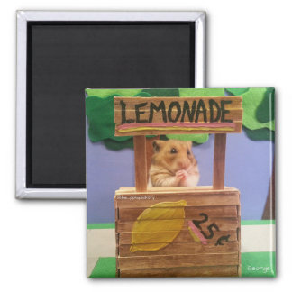 Will You Buy Some Lemonade? Pretty Please? Magnet