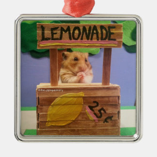 Will You Buy Some Lemonade? Pretty Please? Silver-Colored Square Decoration
