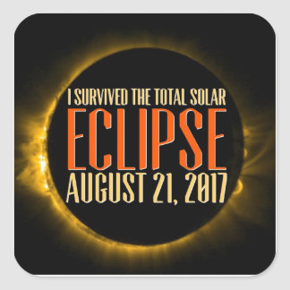 Will you witness the eclipse in it's totality? square sticker