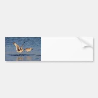 Willet Romance Bumper Sticker