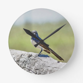 WILLIE WAGTAIL AUSTRALIA WITH ART EFFECTS CLOCK