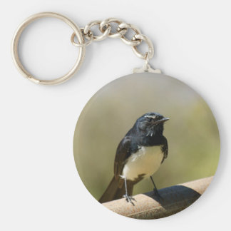 Willie Wagtail Key Ring