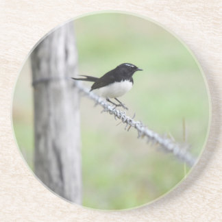 WILLIE WAGTAIL QUEENSLAND AUSTRALIA COASTERS