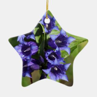Willow gentian (Gentiana asclepiadea) Ceramic Star Decoration