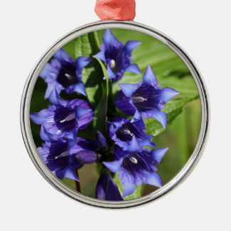 Willow gentian (Gentiana asclepiadea) Silver-Colored Round Decoration