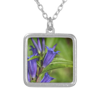 Willow gentian (Gentiana asclepiadea) Silver Plated Necklace