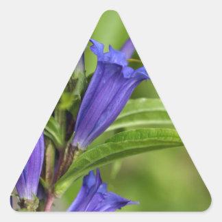 Willow gentian (Gentiana asclepiadea) Triangle Sticker