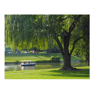 Willow River 190 Blank Postcard