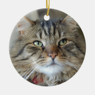 Willow the cat ornament