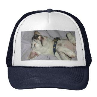 Willow the Vampire Dog Trucker Hat