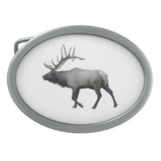 Willow Wapiti elk Belt Buckles