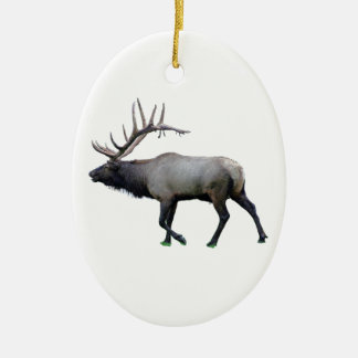 Willow Wapiti elk Ceramic Oval Decoration