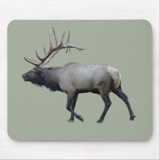 Willow Wapiti elk Mouse Pad