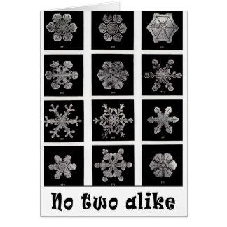 Wilson Bentley's Snowflakes, 1902 Card