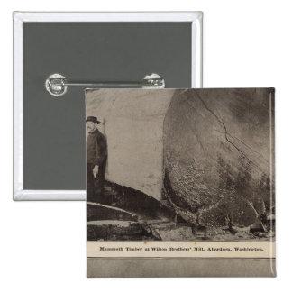 Wilson Bros Mill Bird s eye view of Aberdeen Pinback Button