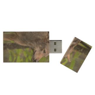 Wily Wolf Wood USB 2.0 Flash Drive