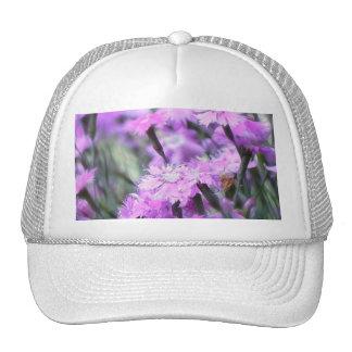 Wind Blown Dianthus Hat