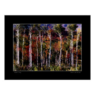 Wind in the Birches Print