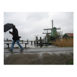Wind & Rain at Zaanse Schans Windmills Postcard