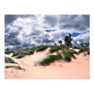 Wind Swept Sand Dunes Postcard