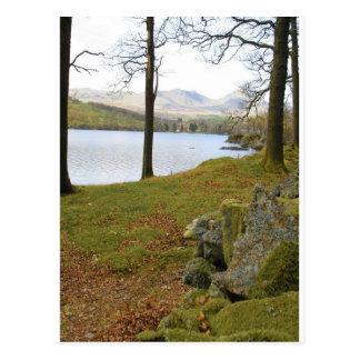 Windermere Lake In Lake District Postcard