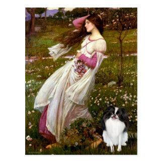 Windflowers - Japanese Chin 3 Postcard