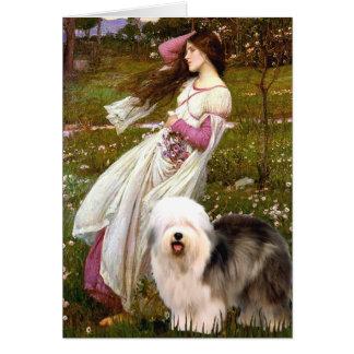 Windflowers - Old English 12 Card