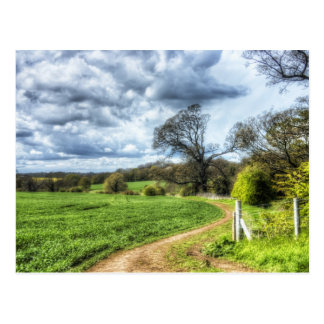 Winding Country Path HDR Postcard